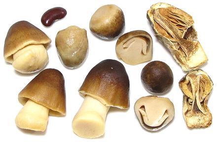Straw Mushrooms – Slámové houby